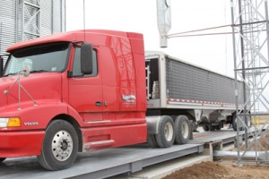 grain dump truck scale